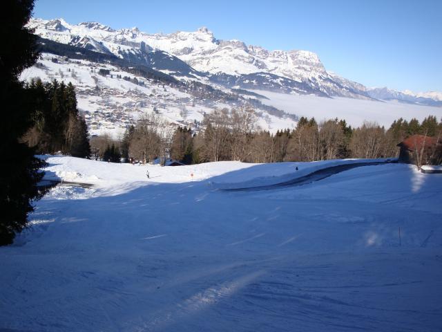 Grand bois; Megève Mont d'arbois Dsc00575-9607df
