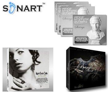 Sonart Audio Venice Instruments v1 Orchestra Strings WAV NKI FXP EXS