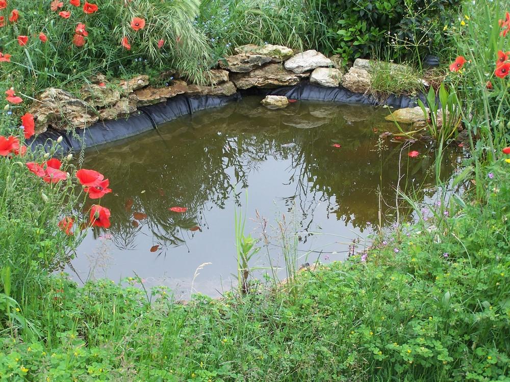 Domaine de viverols la mare for Marre de jardin