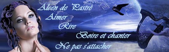 Les bannieres faites Baniere-alenn-21a8598